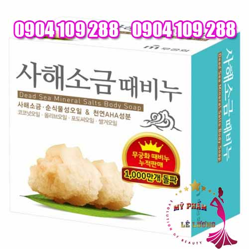 Dead sea mineral salts body soap
